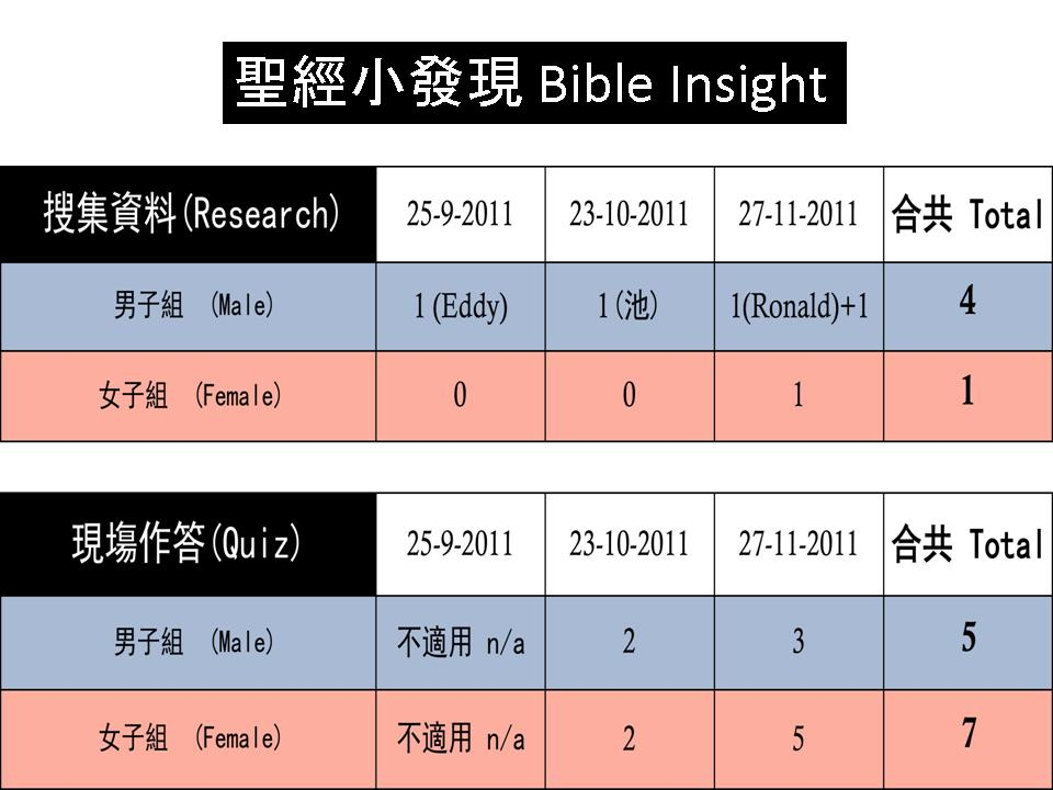 Bible Insight Report